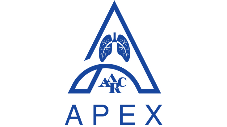 Apex logo on white background